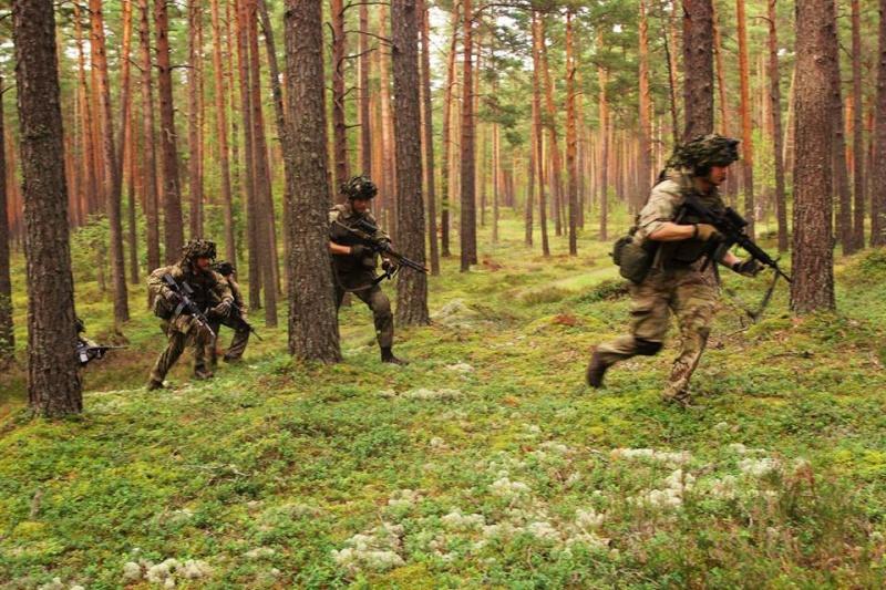 Armée danoise/Danish Defence(Forsvaret) - Page 8 921