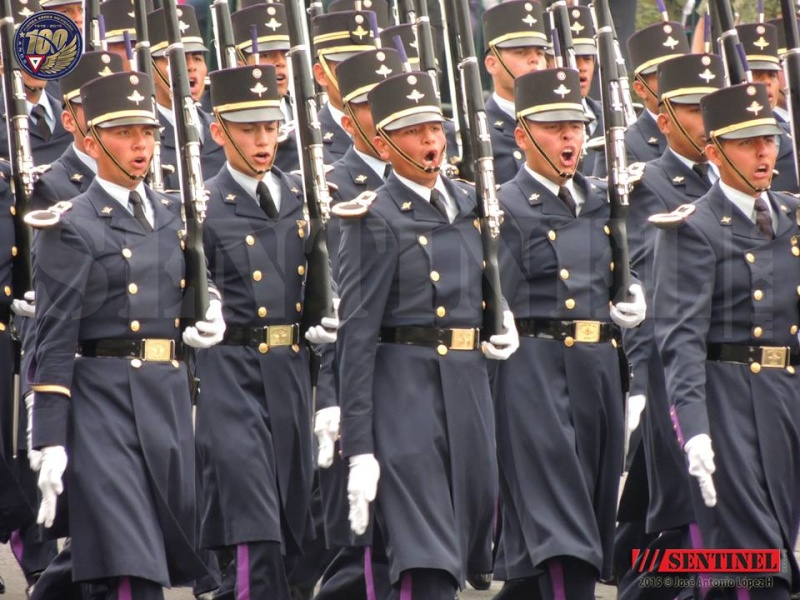 Armée Mexicaine / Mexican Armed Forces / Fuerzas Armadas de Mexico - Page 7 995