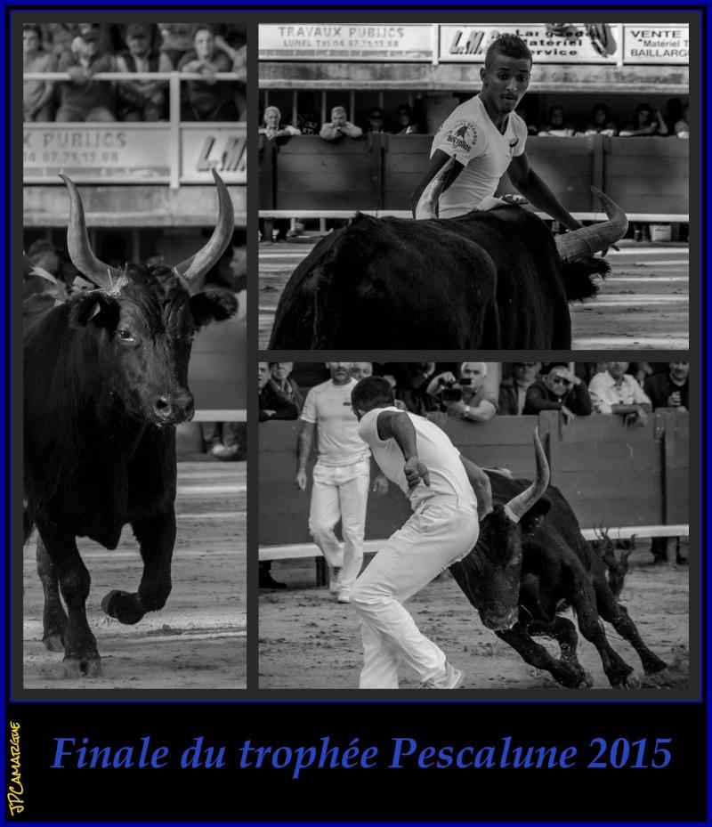 Finale du trophée Pescalune 2015 ( 01/11/2015 ) _dsc0910