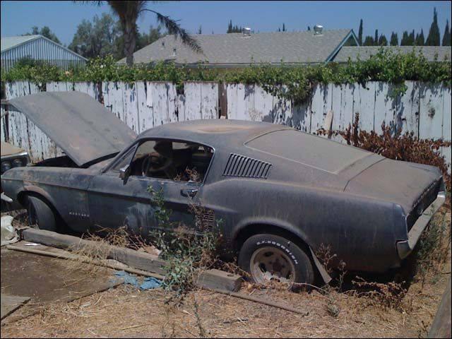 D'autre photos d'épave de Mustang 1967 1968 67_710