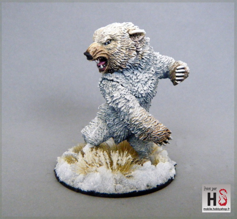 Galerie de Greg: Expedition Frostgrave 2015-145