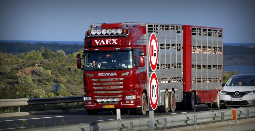 Vaex  (Reek) _mg_7930