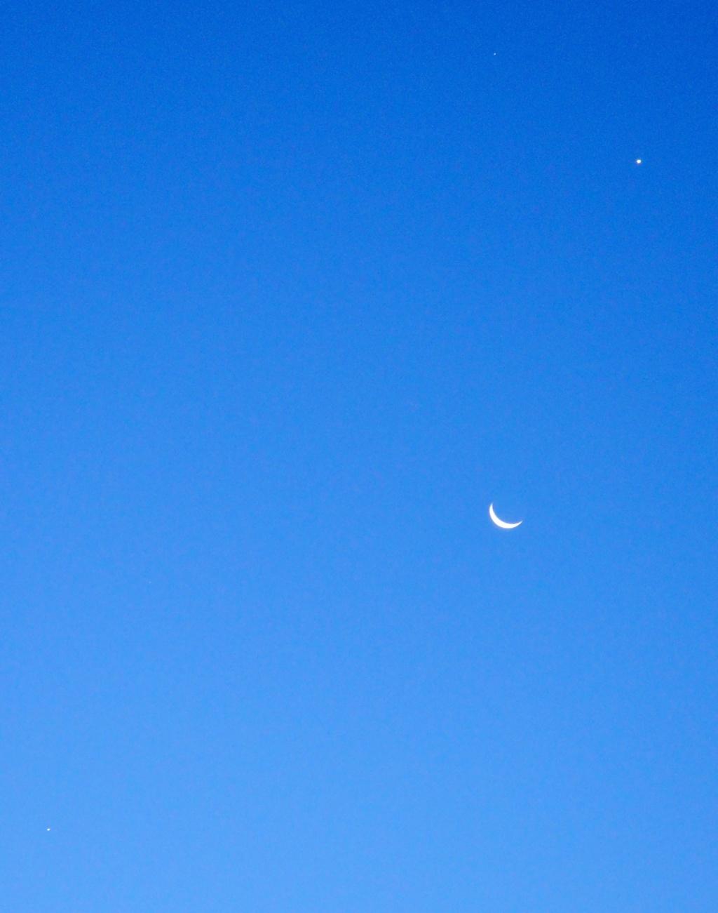 Lune et Venus au petit matin du 10/12/2012 Conjon10