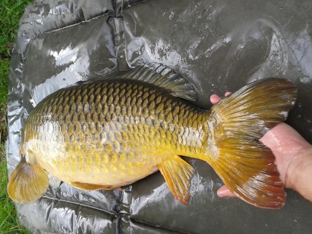 ptite pêche  20150910