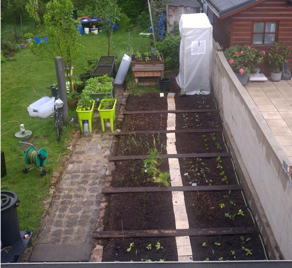 Plan de jardin 20210511