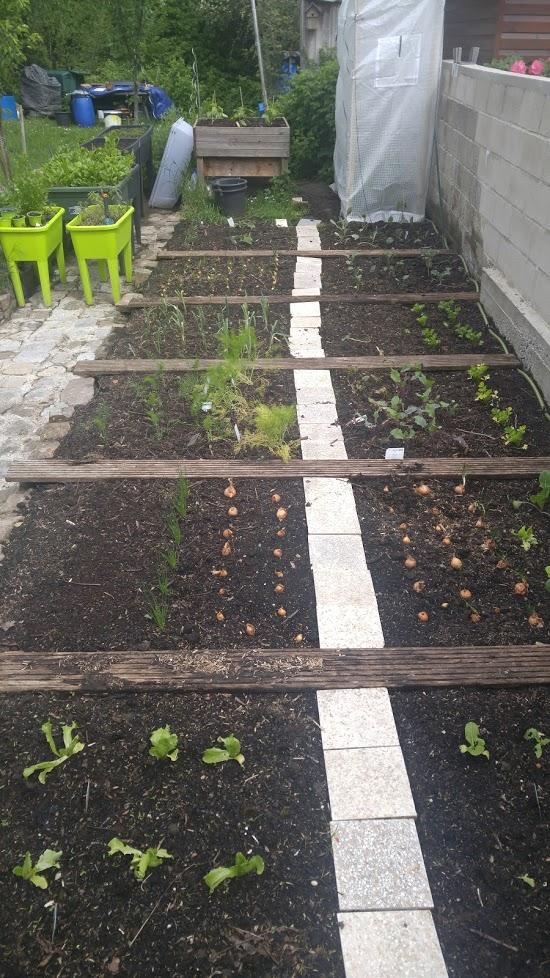 Plan de jardin 20210512