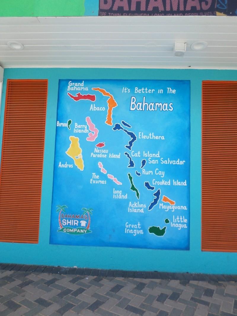 Disneymoon : Walt disney world & Disney cruise line mai 2015  - Page 7 Sam_1345