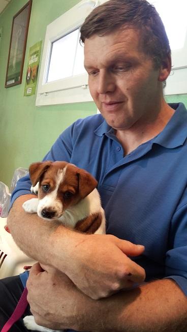 Visite Vétérinaire 20150958