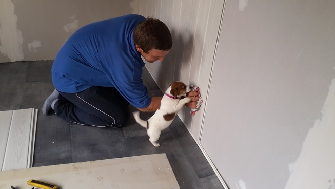 Visite Vétérinaire 20150960