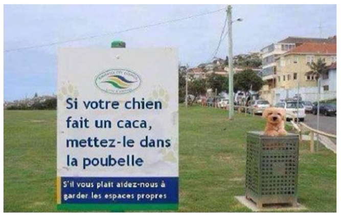 Blagues - Page 2 Chien-10