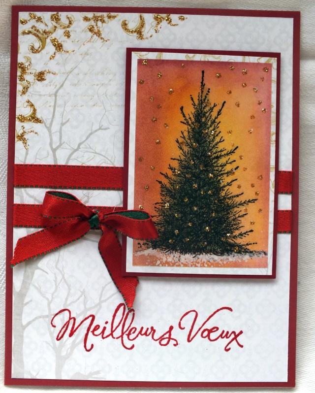 5 décembre-inspiration carte: sapin & branchage Dscf0917