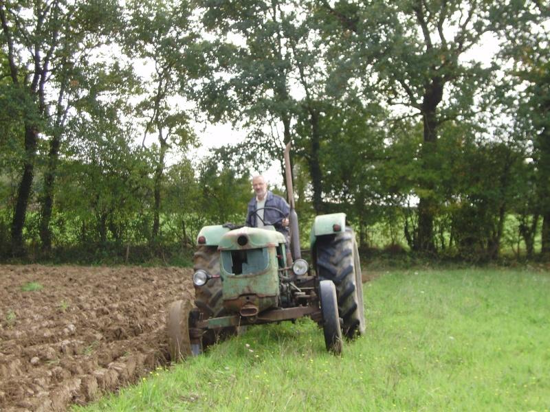 semi de blé  Pa210811
