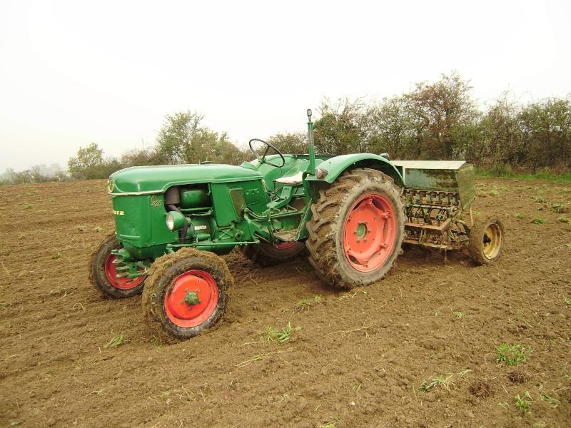 semi de blé  Pa230810
