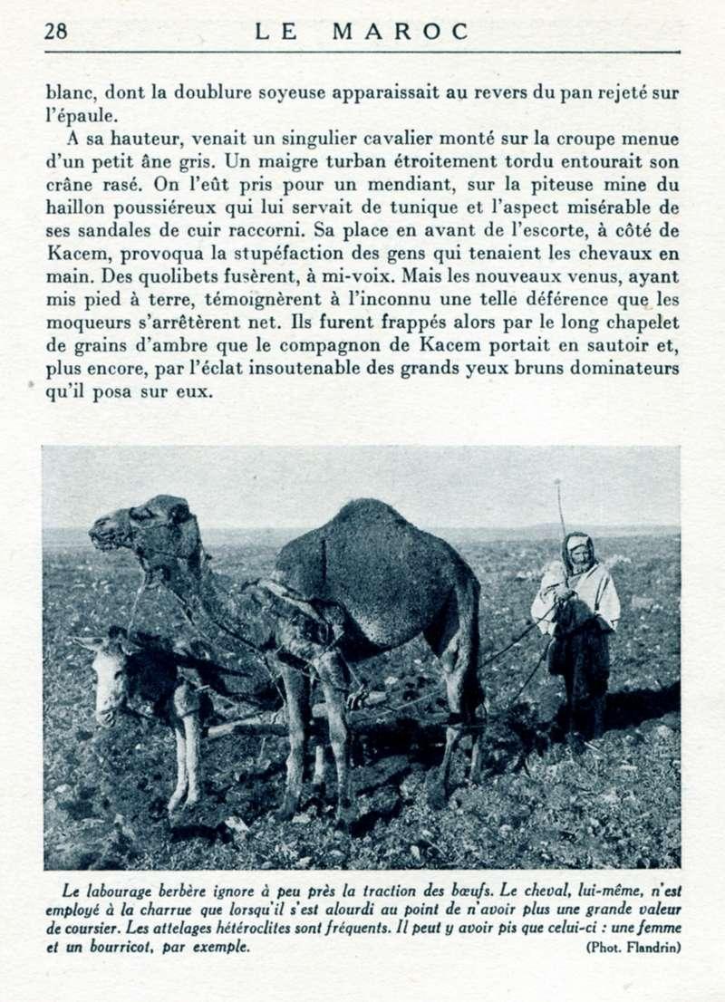 LE MAROC, R. Thomasset. - Page 2 20-le_10