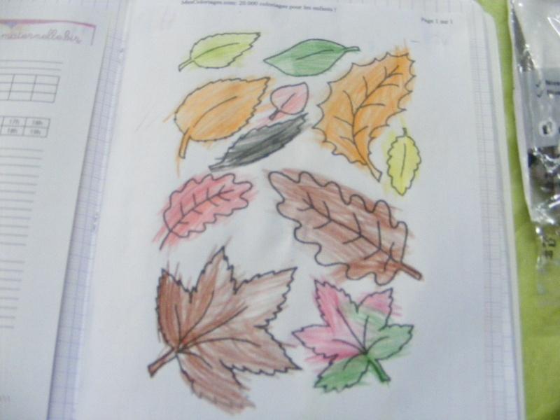 activités sur l'automne Dscf3012