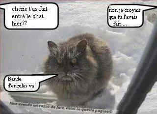 Humour en image du Forum Passion-Harley  ... - Page 2 16052210