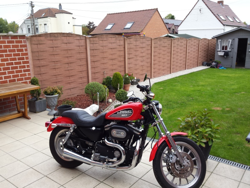 acquisition sportster 883R 20151011