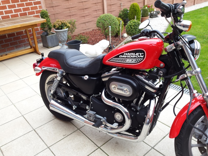 acquisition sportster 883R 20151012