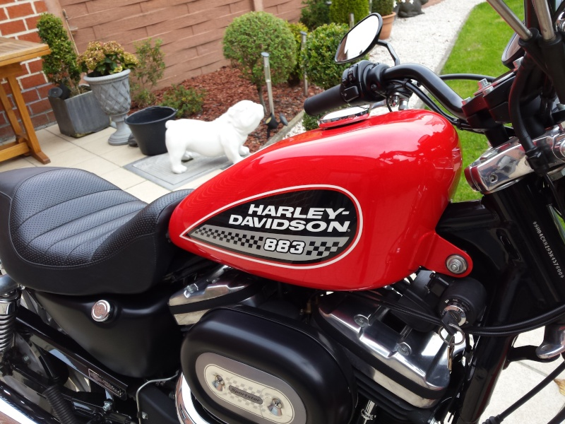 acquisition sportster 883R 20151013