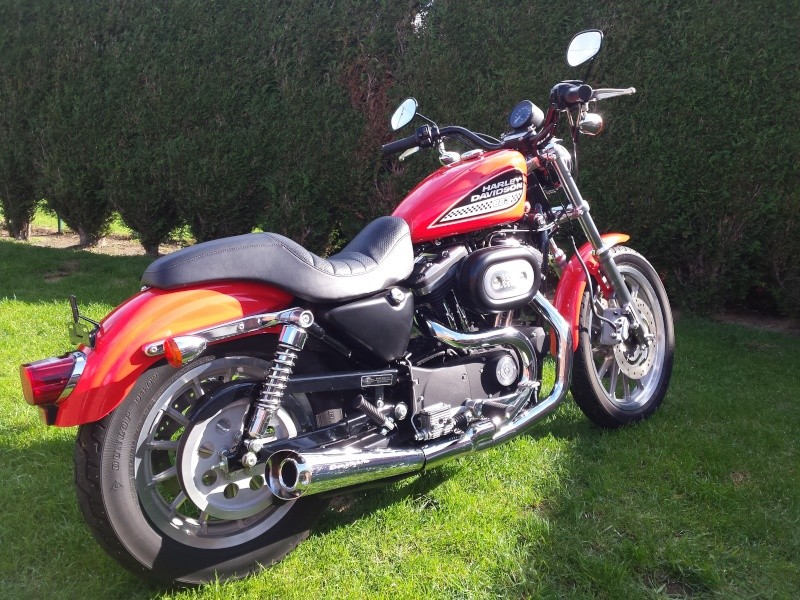 acquisition sportster 883R 20151014