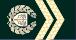 Sargento-Mor