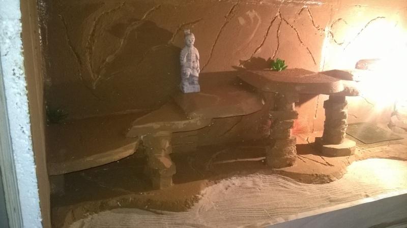 Le nouveau terrarium que mon pote est occupé a construire pour ses petiots 11112310
