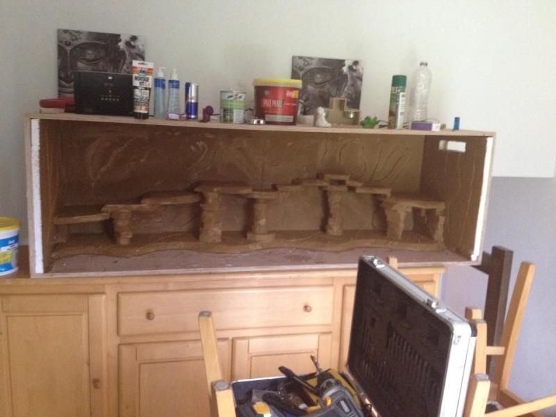 Le nouveau terrarium que mon pote est occupé a construire pour ses petiots 11218910