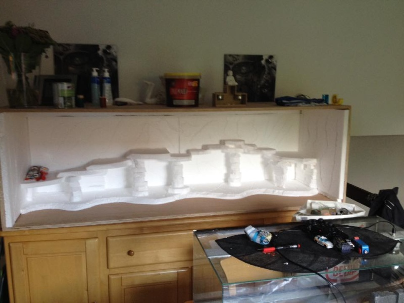 Le nouveau terrarium que mon pote est occupé a construire pour ses petiots 11953110