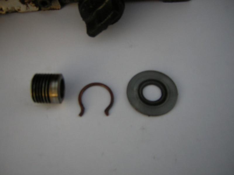 Pompa olio Alpina A40 Dscn0811