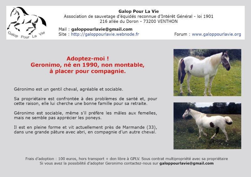 GERONIMO - hongre né en 1990 - annonce désactivée à la demande de la propriétaire  Geroni10