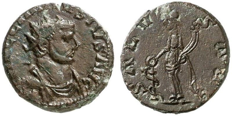Carausius Rouen  Caraus13