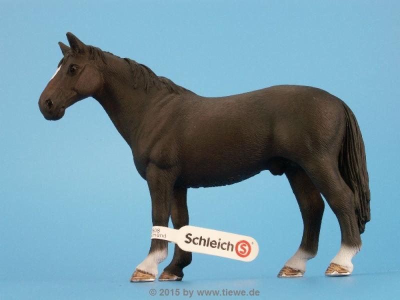 New Müller Models Y8214210
