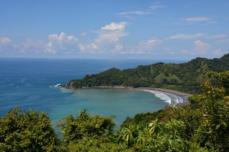 Les palathéo au Costa Rica Dsc_7610