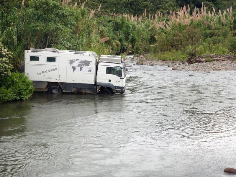 Les palathéo au Costa Rica Dscn2410