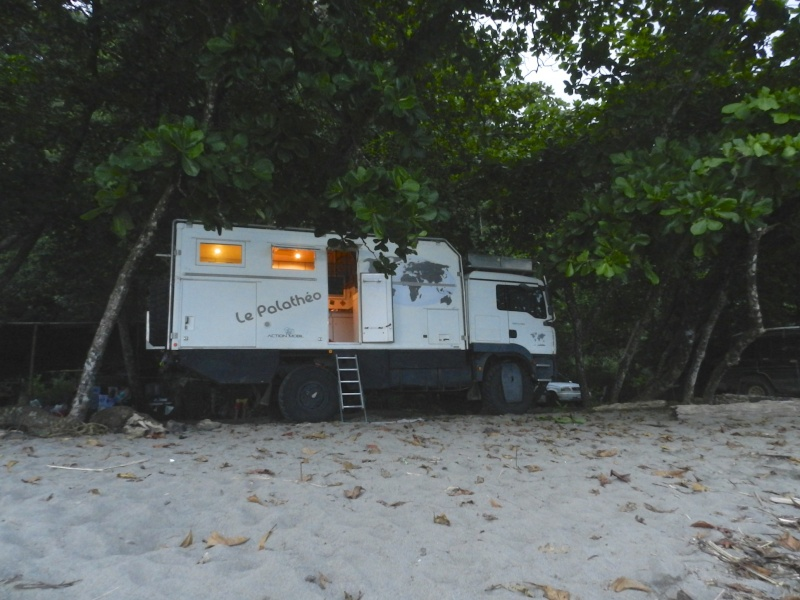 Les palathéo au Costa Rica Dscn6710