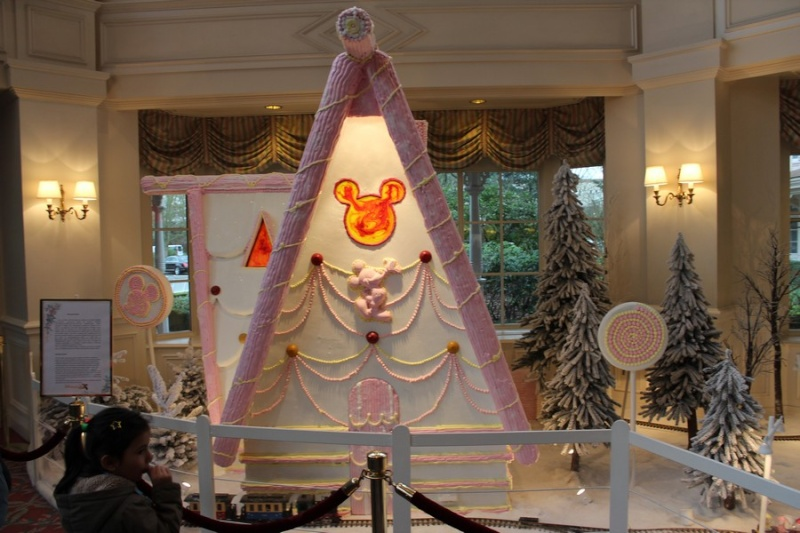 Disneyland® Hotel - Pagina 2 17211