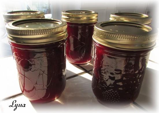 Confiture de prunes Confit11