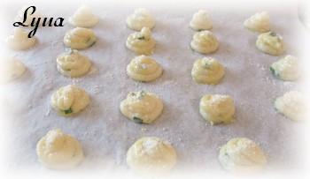 Gougères aux fromages Gougyr12