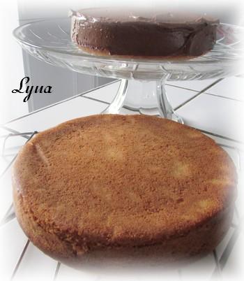 Gâteau à la vanille et crème sûre Gyteau16
