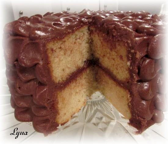 Gâteau à la vanille et crème sûre Gyteau17