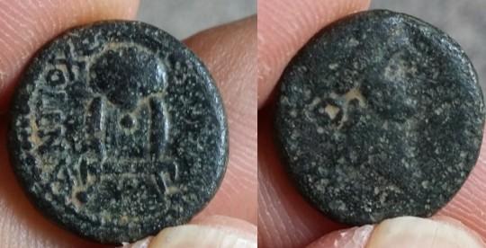 APAMEE Syrie séleucide Démétrios I Soter autonome Antioche Picsar16