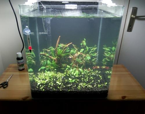 40 litres d'eau douce.. P5101916