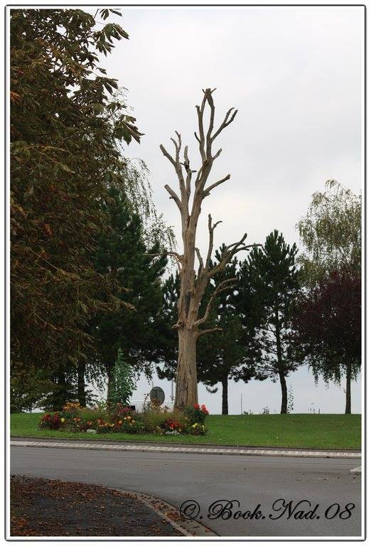L'arbre du pendu de Rethel. 11953210