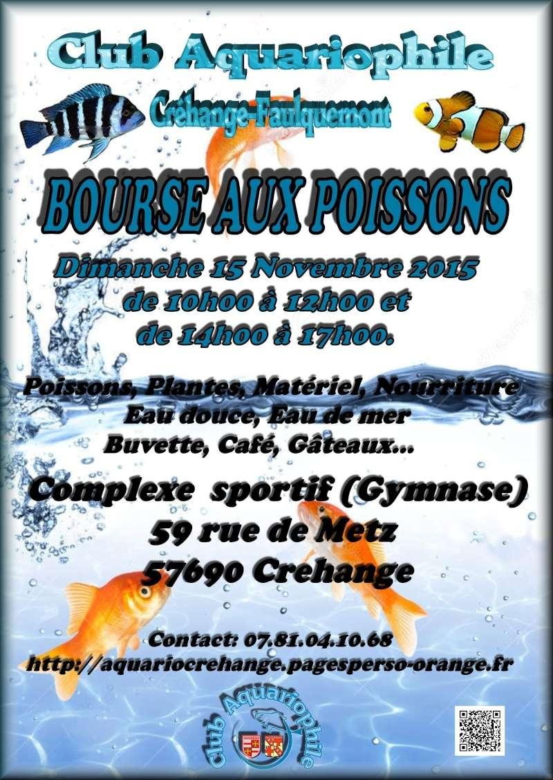 Bourse à Créhange le 15 novembre  Bourse12