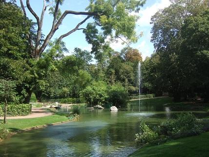 (85) Jardin Dumaine - Luçon Dscf7736