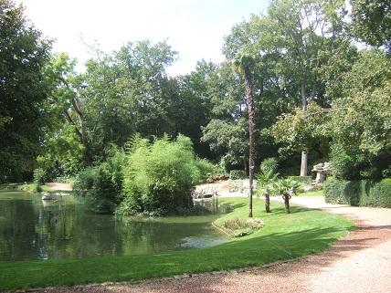 (85) Jardin Dumaine - Luçon Dscf7832