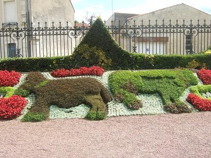 (85) Jardin Dumaine - Luçon Dscf7836