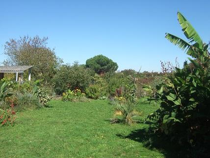 la rentrée du jardin - Page 4 Dscf8138