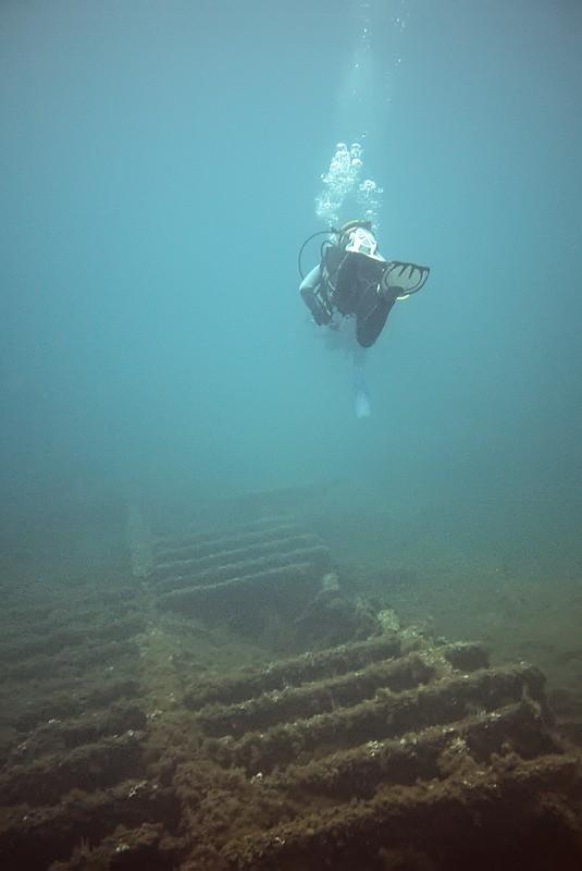 Plongées au Cap de Creus - Costa Brava. P1060810