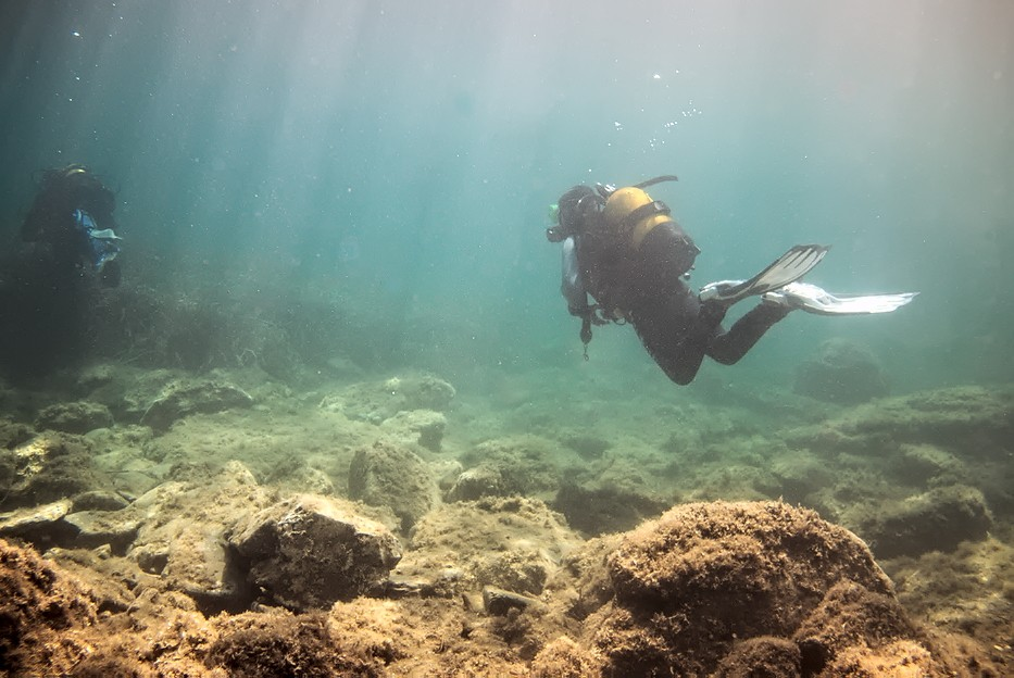 Plongées au Cap de Creus - Costa Brava. P1060910